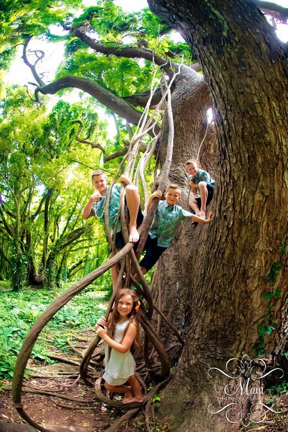 Photographers in Maui