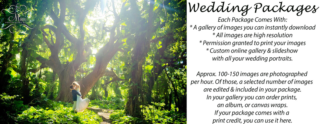 wedding photographer in maui