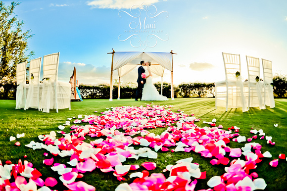 wedding photographer in maui in the beach