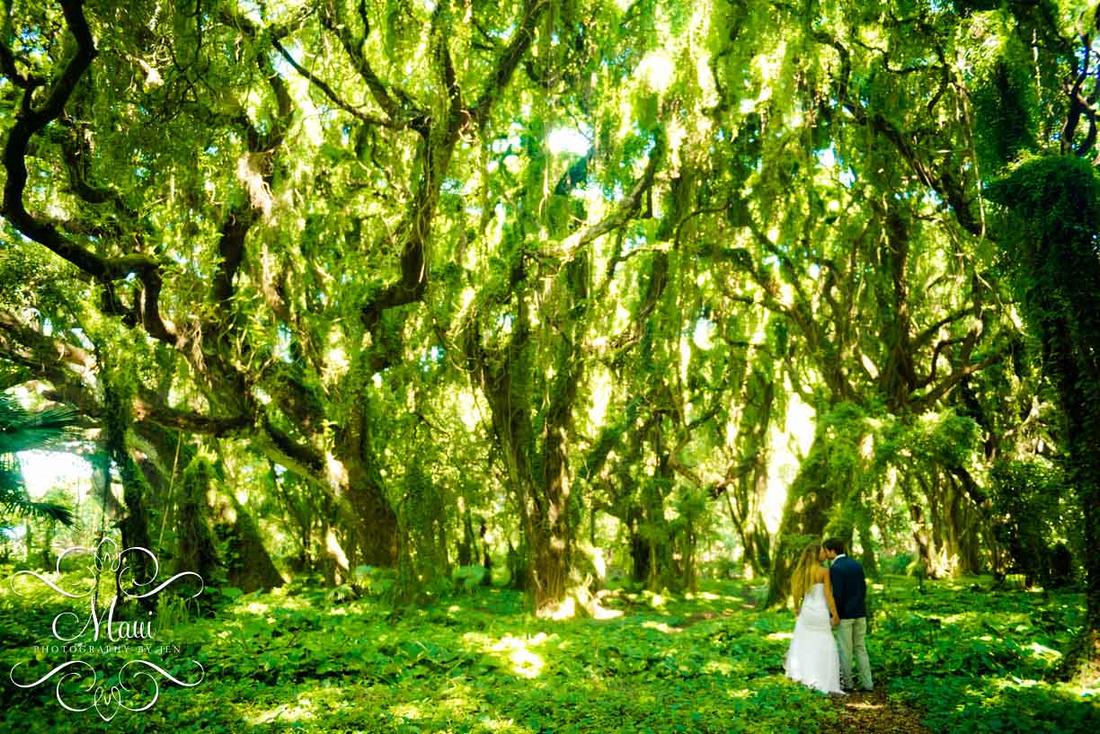 Photographers in Maui Wedding